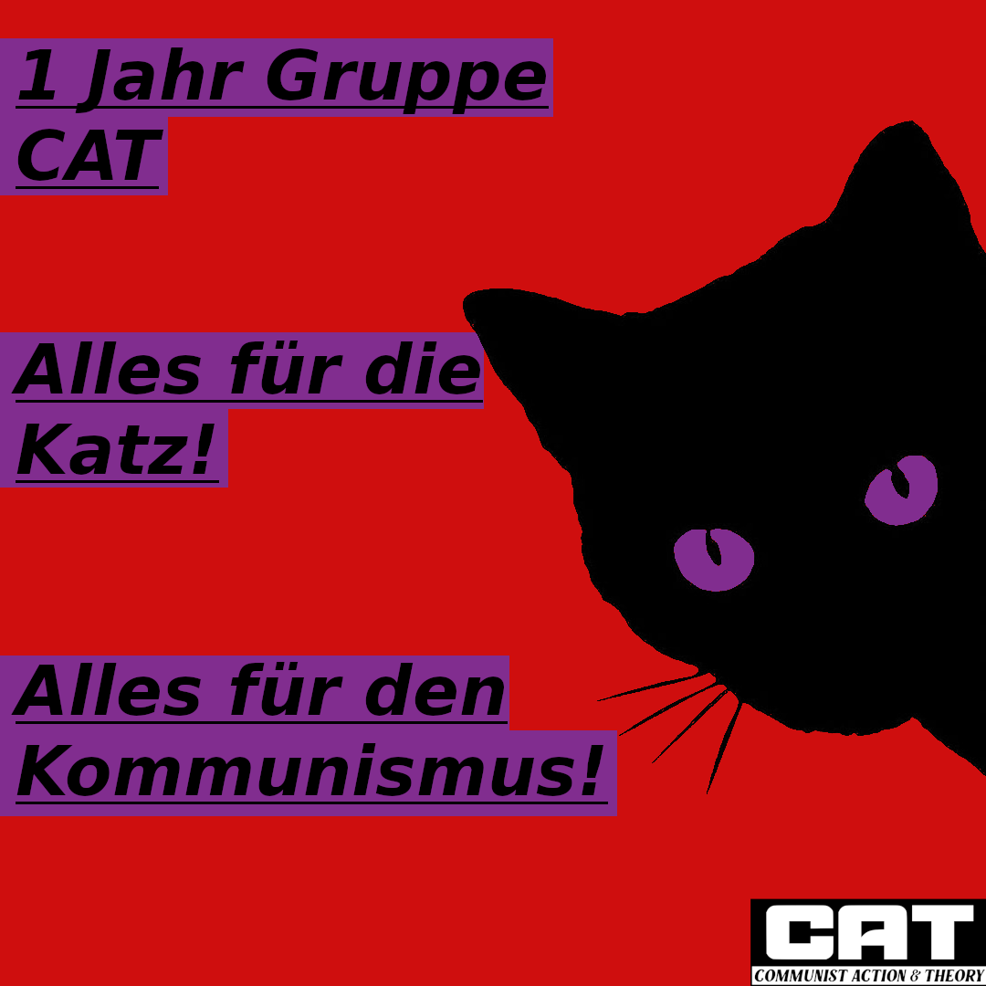 1 Jahr Gruppe CAT – We are back!